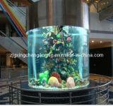 Modern Round Large Acrylic Aquarium