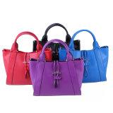 Fashion Ladies Elegant Design Genuine Cow Leather Handbag (W8007)