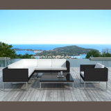 Sectional Sofa/ Furniture Outdoor/ Round Table (DH-9582)