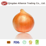 2017 Chinese Fresh Yellow Onion