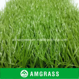 High UV-Resistant Synthetic Soccer Grass and PE Football Artificial Turf