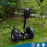19 Inch 2 Wheel Smart Balance Golf Scooter 4000W 72V