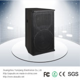 Dm-122 250W 2-Way Full Range Professional Loudspeaker Wireless Speaker