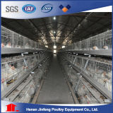 Jaulas Pollos / Chicken Layer Cage