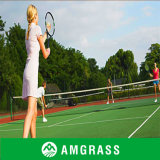 Professional Manufacturer/Supplier of Tennis Basketball Artificial Grass (AN-20L)