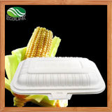 380ml 100% Disposable Biodegradable Lunch Box with Cornstarch Material