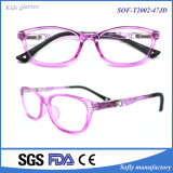 2016 New Tr Optical Frame and Simple Style Optical Frame