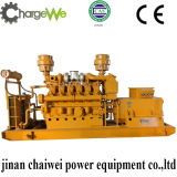 Natural Gas Generator with Cw-800 Low Price