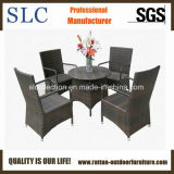 Plastic Rattan Furniture/Furniture Set/Bamboo Furniture (SC-M0035)