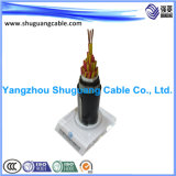 Screened/XLPE Insulated/PVC Sheathed/Stranded/Computer/Instrument Cable
