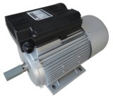 Yl Series CE Approval AC Motor, Electric AC Motor