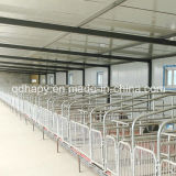 Complete Set Pig Farming House Equipment
