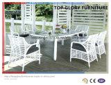 Outdoor Rattan Garden Dining Set (TG-1615)