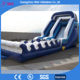 Large Inflatable Water Slide for Kids and Adults