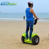 Brushless 4000W Electric Scooter Chariot with Double Battery 1266wh 72V