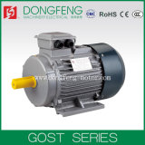 Energy Saving GOST Standard Electric Induction Motor with 380V 50Hz