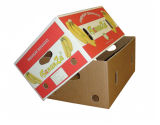 Fruit corrugated Carton Box (FP5072)