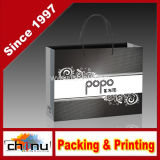Promotion Gift Paper Bag, Printed Paper Bag (5118)