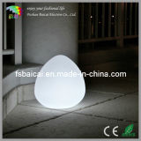 LED Light for Home Decoration (BCD-309L)