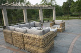 Rattan Furniture (FSS-1639)