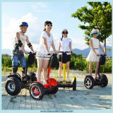 Two Wheel Self-Balancing Electric Chariot Scooter Lowest Price Scooter