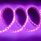5050 Pink (m/60lights) LED Flex Light
