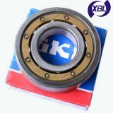 SKF Deep Groove Ball Bearings (6xxx Series)