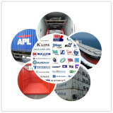 Professional Consolidate Shipping Services From China to Greece
