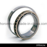 Hot Sale Chinese Cylindrical Roller Bearing (NU 211 ECP)