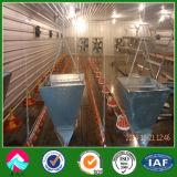 Raising Broiler House Automatic Equipment