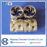 Ss 316 Pall Ring for Chemical Tower Packing Manufacturer Factory