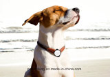 Pet Activity Monitor P1, Pet GPS Tracker Collar