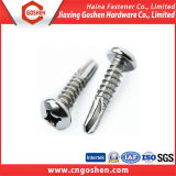 Stainless Steel Self Drilling Anchor Bolt/Self Drilling Screw