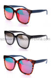 China Wholesaler Manufacturer Personalized Tac Tr90 Sunglasses