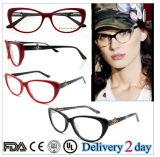 Cat Eye New Acetate Fashionable Optical Frames