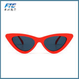 Best Selling Fashion Sunglass for Men with Custom Logo