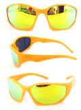Wenzhou Mirror Lens Ce FDA Tr90 Sport Sunglasses