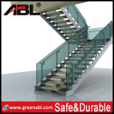 Stainless Steel Staricase Glass Railing (DD162)