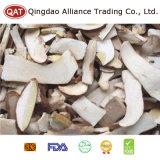 Top Quality Sliced Boletus Mushroom