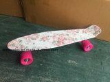 Penny Skateboard, Plastic Skateboard (ET-PSK001)