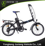 Smart Hot Sale Folding E-Bike (TDN28Z-1)