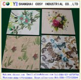 PVC Foam Sheet- High Quality Materials for Outdoor Printing