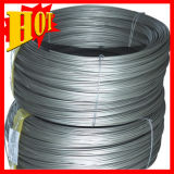 ASTM B863 Gr5 Alloys Welding Titanium Wire with Customize