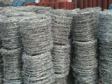 Hot Dipped Gi Barbed Wire Can Customize Size