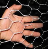 High Quality Hot Dipped Galvanized Hexagonal Chicken Wire Netting