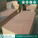 (1250X2500mm) Bbcc Grade Bintangor Plywood/Okoume Plywood for Furniture Use
