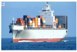 Consolidate Freight for Cargos to USA/Canada/Mexico Container Shipping