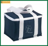 Insulated Thermal Familay Capacity Large Cooler Bag (TP-CB033)
