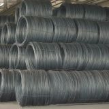 Carbon Steel Wire Rod SAE1006, SAE1008, SAE1018