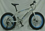 26*4.0′′ Steel MTB Bicycle/Bike with 7 Speed